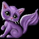 Witty Purple